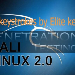 Record keystrokes by Elite keylogger on Window 10